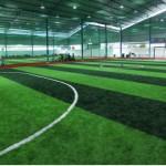 Biaya Pembuatan Lapangan Futsal indoor dan outdoor