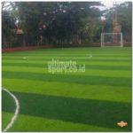 Rumput Lapangan Futsal