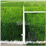 Harga Rumput Lapangan Futsal
