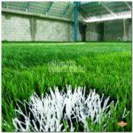 Jual Rumput Futsal