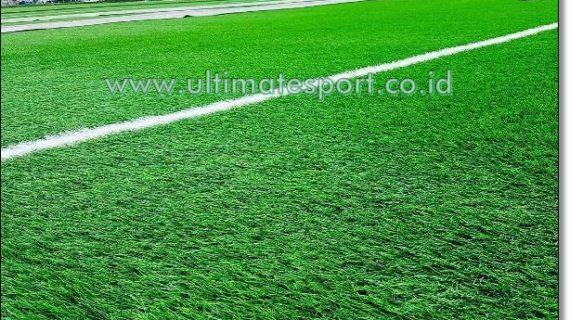 Jual Rumput Sintetis Futsal Sorong