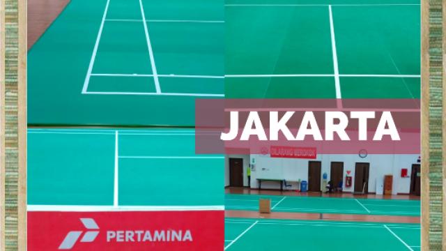 vinyl badminton
